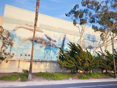 Whale wall in South Redondo Beach